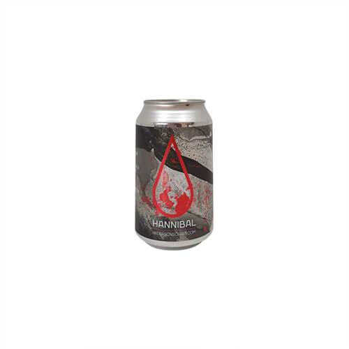 Anderson's Craft Beer Hannibal